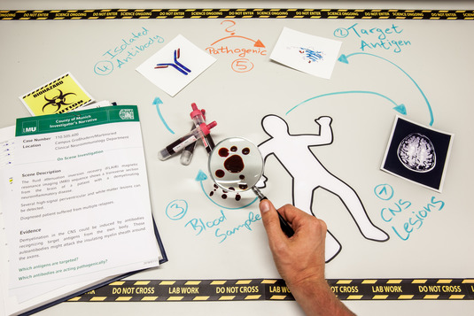 <b>Crime scene: working in the lab</b>